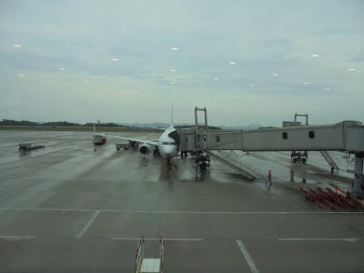 三ヶ月遅れの広島訪問ー3 ANA684 広島→羽田