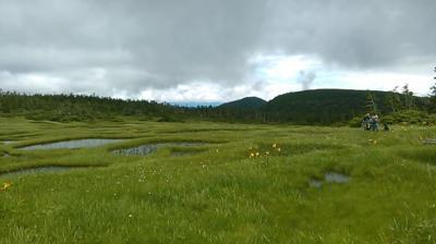 梅雨の晴れ間に秋田駒ヶ岳2