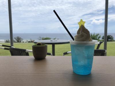 奄美レンタカー周遊とフルーツ堪能の旅