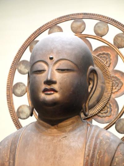 2020.7上野の博物館を見学した後,成田へ2-東京国立博物館続き,国立科学博物館に人類史を見に行く