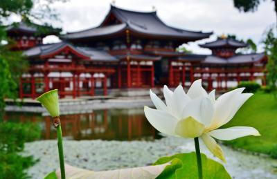 京都市内 散策旅行記 ②
