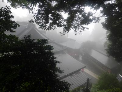 雨の高尾山