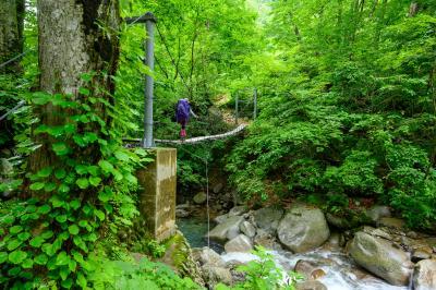 タキタロウ伝説の池、大鳥池キャンプ場でテント泊。以東岳登山。