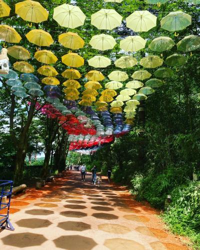 2000本のアンブレラスカイ、夏のムーミンバレーパーク