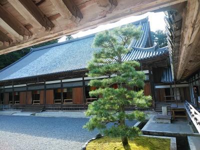東北2020夏旅行記 【3】松島3(瑞巌寺)