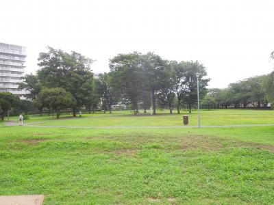 ふじみ野市福岡中央公園付近の風景