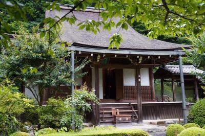20200726-2 京都 寂光院、ひと気無く雨の合間にしっとりの風情