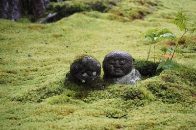 20200726-3 京都 大原と言えば三千院…ですが、雨であんま観られんかったかも?