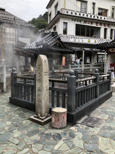西日本温泉巡りの旅 2  湯村温泉