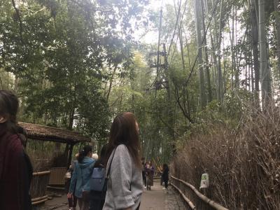 紅葉時期の京都へ 最終日