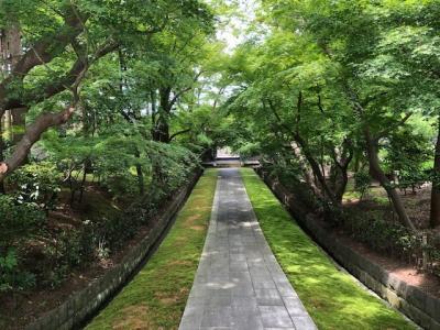 藤沢の寺社巡り(3)