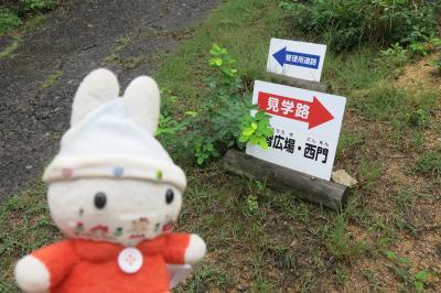 グーちゃん、「GO TO」で、吉備路へ行く!(鬼ノ城/ブラタモリに負けるな!編)