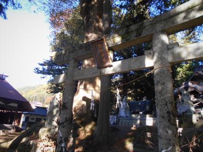 ヤマトタケルの家路12  伊那谷の神社、乙橘姫悲話の真実?