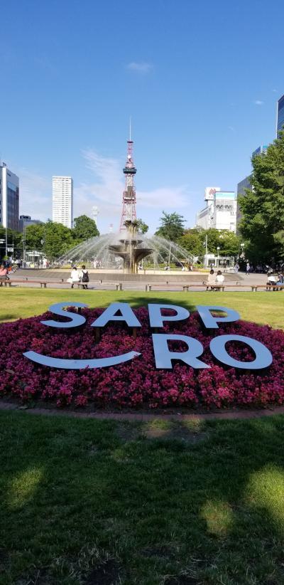7月に行けた!夏の札幌、富良野、積丹半島!