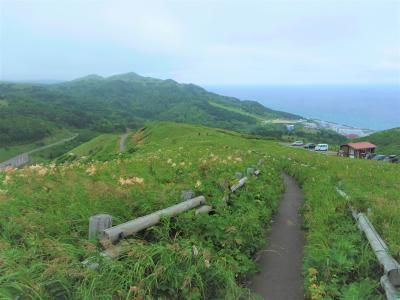あこがれの利尻島・礼文島へ(3)・・礼文島、花ガイドさんと桃岩展望台コース・ハイキング