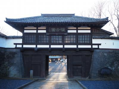 2020如月 長野県の日本百名城5城を一気に巡る ④2日目後半は日本唯一の「穴城」小諸城へ