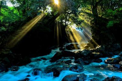 小国の滝巡り 2020