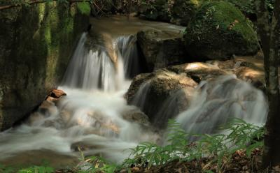 梅雨が明けて暑くなりました 涼しさ呼ぶ猿投山麓猿投七滝滝巡り♪