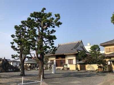 与野本町の長伝寺は、とても由緒あるお寺でした