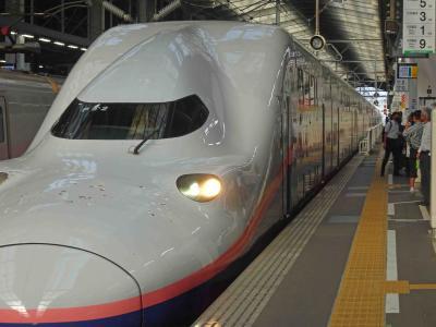 コロナ騒動下の新潟往復と東京駅グランスタ