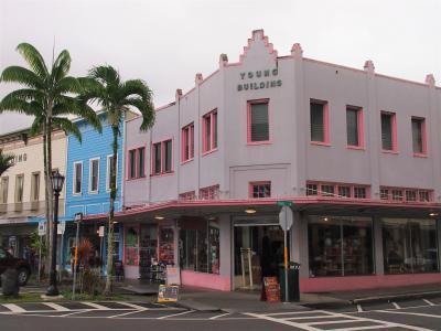 2020春 HAWAII WEDDING2~古き良きハワイに出会った ヒロ・ホノカア・ワイピオ渓谷~