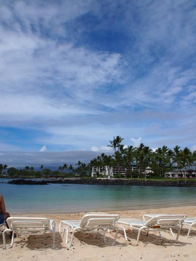 2020春 HAWAII WEDDING3~ホヌとの出会い&悪天候のマウナケア山~