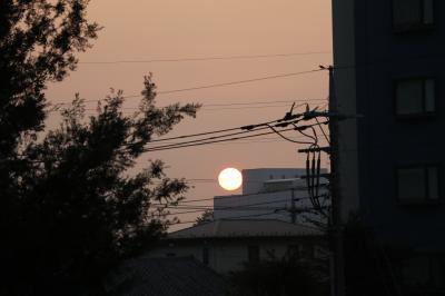 小さな旅 夜明けのわが街小手指2020 写真追加 Daybreak of my town Kotesashi