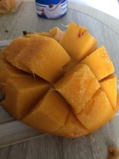 ANAパックが安かったので、1泊2日沖縄マンゴー祭り