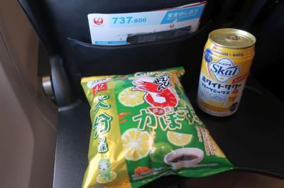 【2020年国内】JALどこかにマイルで行く大分 #03 ~寄り道しつつ東京へ~