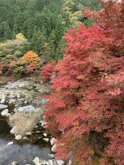紅葉の奥津温泉(岡山県)