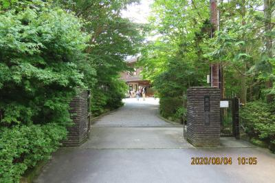 久しぶりに箱根旅行をしました④姥子駅~桃源台駅~湿生花園へ