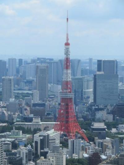 六本木ヒルズの展望台東京シティビューと森美術館に行きました