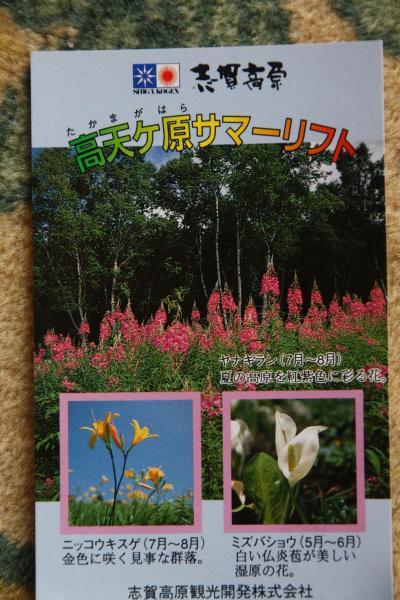 信州・志賀高原「東館山、高山植物園」