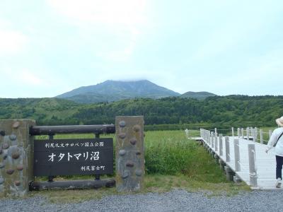 憧れの利尻島~礼文島、最北の自然を楽しみました!(2)利尻島観光編