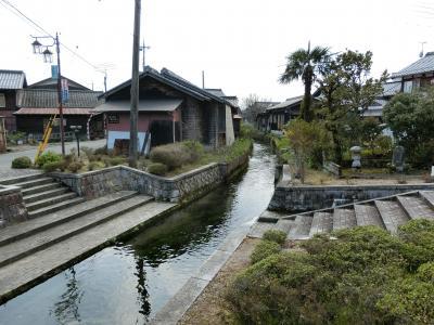 桜の琵琶湖周遊①