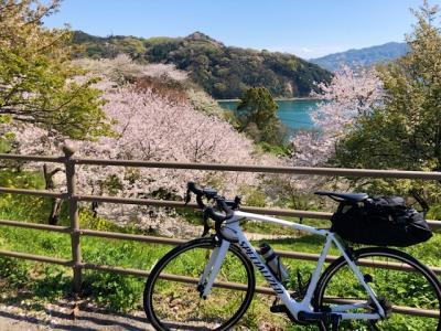 サンライズ瀬戸と香川のうどんを堪能しつつ、しまなみ海道で自転車の旅 3日目