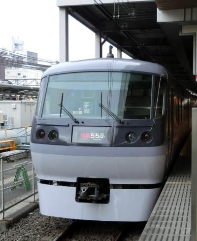 埼玉への旅 その2 西武特急で
