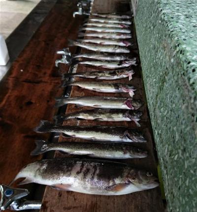 越後湯沢温泉NASPAニューオータニに宿泊して湯沢フィシングパークで童心に戻って虹鱒釣りを楽しむ