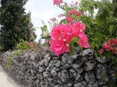 初めての八重山旅行2日目。竹富島に泊まる。