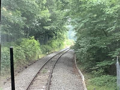 緑のトンネルを抜けて清里高原へ 2020