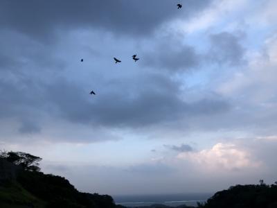 沖縄本島の旅 その4