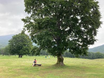 3密避けながら行ってみた「夏の妙高高原&糸魚川で宝石拾い」(小4&卵アレ持ち5歳児と行く家族旅行)