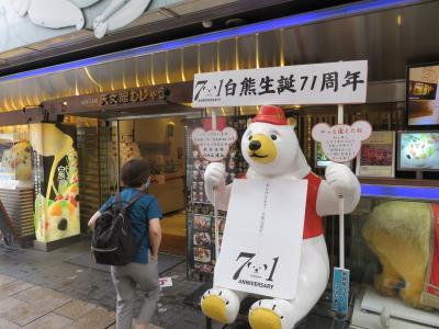 2020JUL「関空から旅行へ行こう!クイズキャンペーン」当選(8_氷白熊)