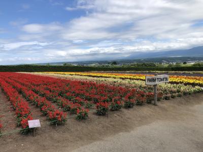 北海道(旭川、富良野)への旅 その2