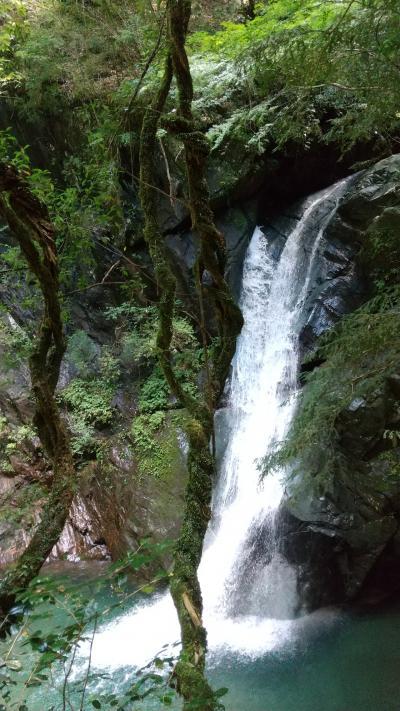 天竜の滝めぐり~大下滝・龍王権現の滝~