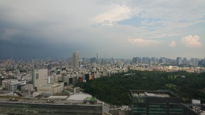 東京ホテルお籠り