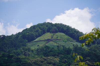 20200814-0 京都 慈照寺参観後、カレーうどん食して哲学の道散策。後、若王子神社から蹴上駅まで。