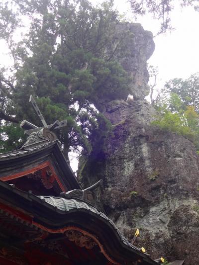 酷暑とコロナの夏、避暑は信州:志賀高原!