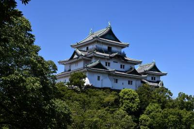 炎天下にお城巡り、和歌山城