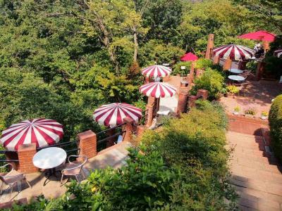 天空の森のカフェ 樹ガーデンで朝ビール! 真夏の鎌倉 葛原岡・大仏ハイキングコースを歩く。
